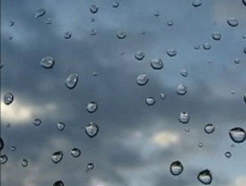 Субботний отдых на природе жителям Мордовии может подпортить дождь