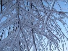 В Мордовии ожидается ледяной дождь