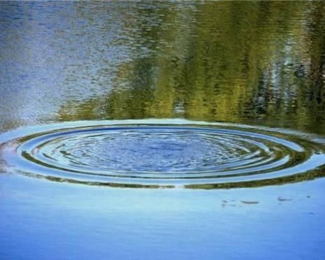 Житель Мордовии утонул в пруду, отмечая День Победы