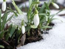 В Мордовии немного похолодает