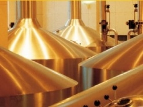 «САН ИнБев» в Мордовии намерен увеличить объемы производства