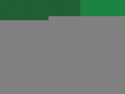 Россельхозбанк увеличил финансирование малого и микробизнеса Мордовии