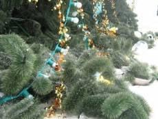 В Саранске ветер свалил новогоднюю елку