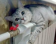 Мэрия: в Саранске перебоев с подачей тепла в квартиры нет