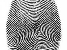 Жители Мордовии будут получать загранпаспорта с отпечатками пальцев