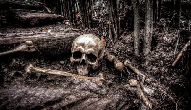 Жителя Саранска осудили за убийство друга, скелет которого нашли спустя 4 года