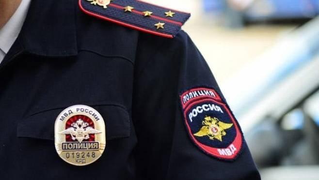 Двумя уголовными делами закончилась встреча иностранки и полицейских в Мордовии