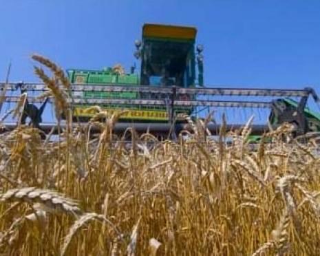 В Мордовии завершается уборка зерновых