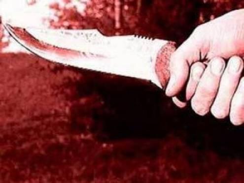 В Саранске установлен подозреваемый в зверском убийстве Валерии Варго