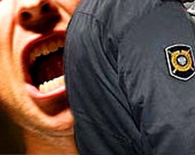 Житель Мордовии отсидит 2 года за укус полицейского