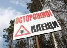 В Мордовии зарегистрированы первые случаи нападения клещей на людей