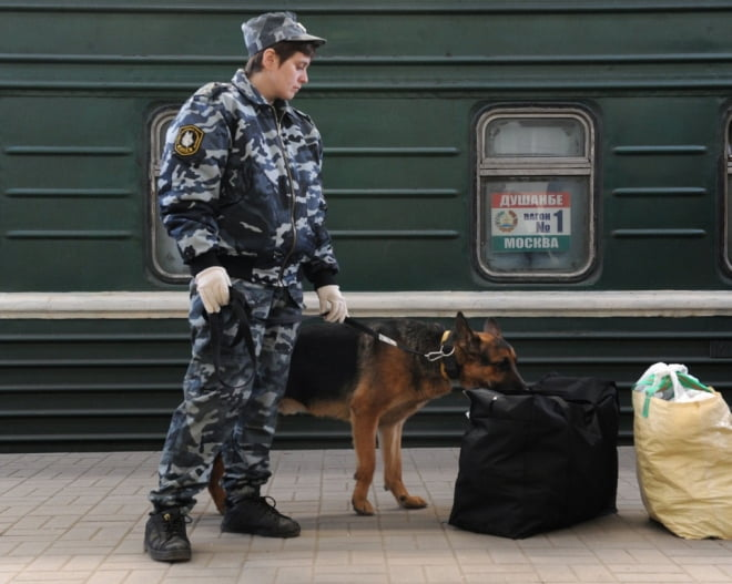 Полицейские Рузаевки сняли с поезда пассажира с 300 гр наркотиков