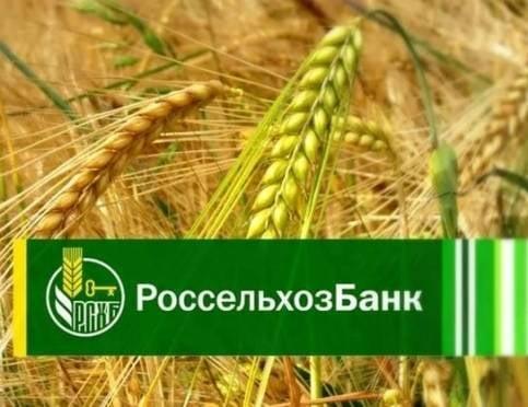 РСХБ с начала 2017 года выдал аграриям Мордовии в 4 раза больше кредитов на посевную