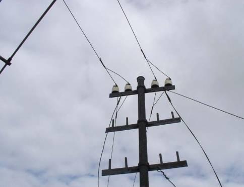 В Мордовии опасаются обрыва линий электропередач и падения деревьев