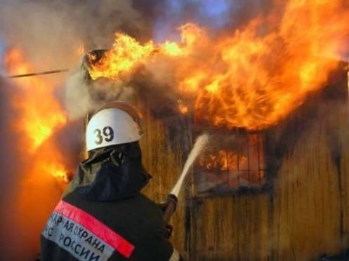 Добровольцы Мордовии потушили 170 пожаров