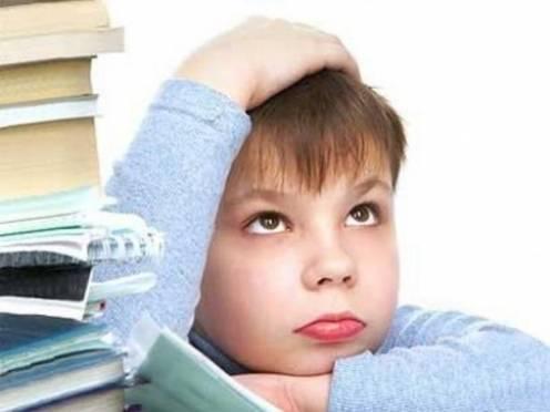 Одаренных детей Мордовии будут учить преподаватели одного из лучших вузов России