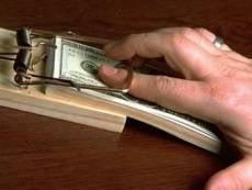МВД Мордовии призывает «сдавать» взяточников