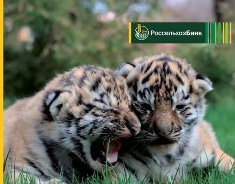 Более трех тысяч жителей Мордовии оформили платежную карту Россельхозбанка «Амурский тигр»