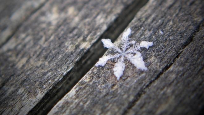 В выходные в Мордовии похолодает до -10°С