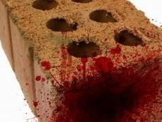 В Саранске мужчина до смерти забил сожительницу кирпичом