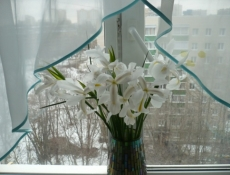 Жители Саранска встретили зиму в тепле
