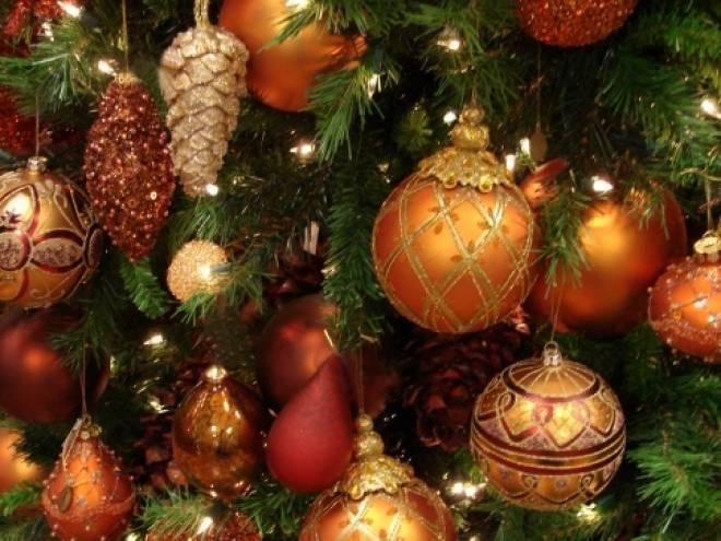 Городские власти уже беспокоятся о новогодней ёлке