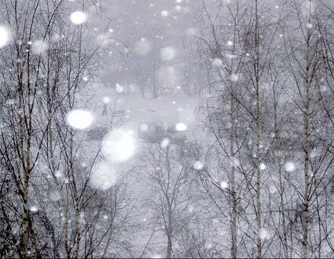 В выходные в Мордовии будет тепло, но ветрено