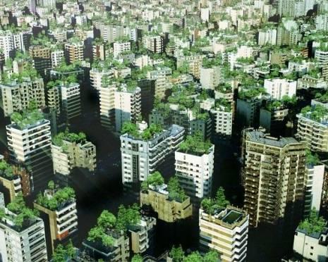 В Саранске займутся озеленением