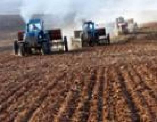В десяти районах Мордовии начался сев зерновых