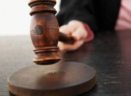 В Саранске осудят убийцу, приревновавшего собаку к подсобному рабочему