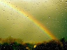Дожди не оставят Мордовию в покое