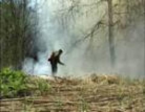 Жители ряда районов Мордовии страдают из-за сильного задымления