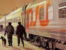 Рузаевская полиция сняла с поезда пассажира с брикетом гашиша