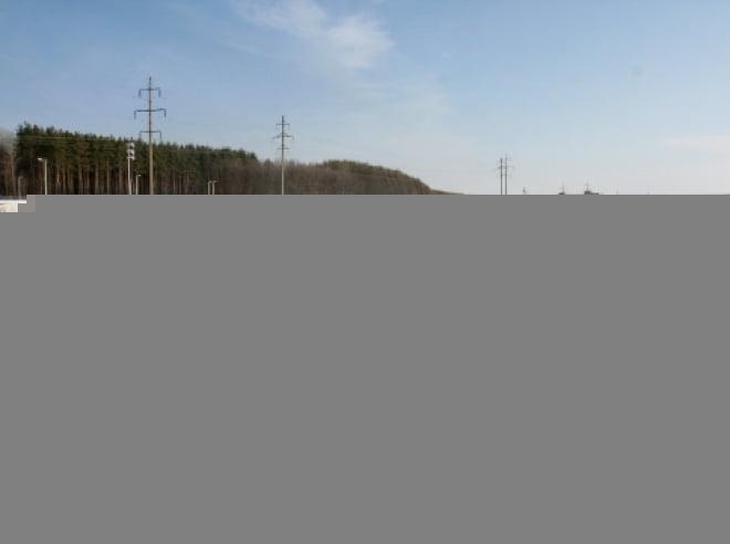 В Мордовии 250 человек вышли на лыжный марафон