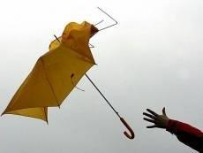 МЧС предупреждает жителей Мордовии о сильном ветре