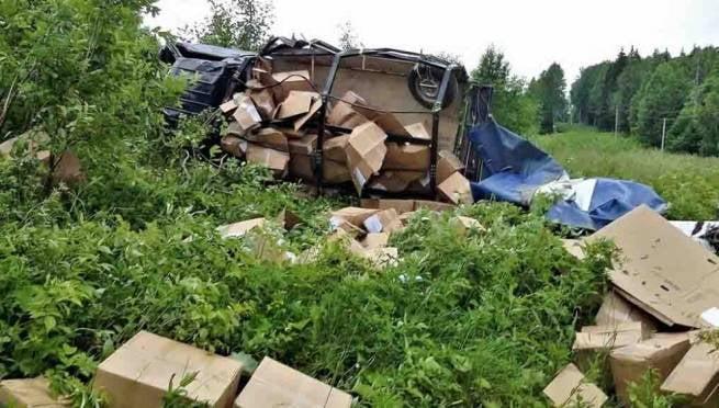 В Мордовии у границы с Пензенской областью перевернулся грузовик