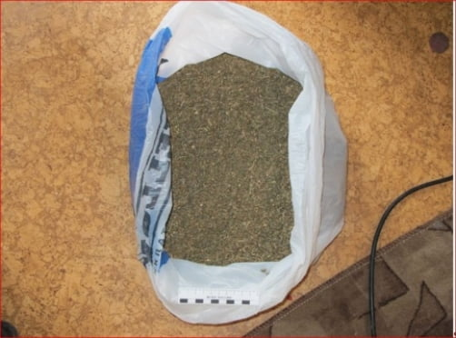 За 2 кг марихуаны мордовскому студенту светит 15 лет тюрьмы