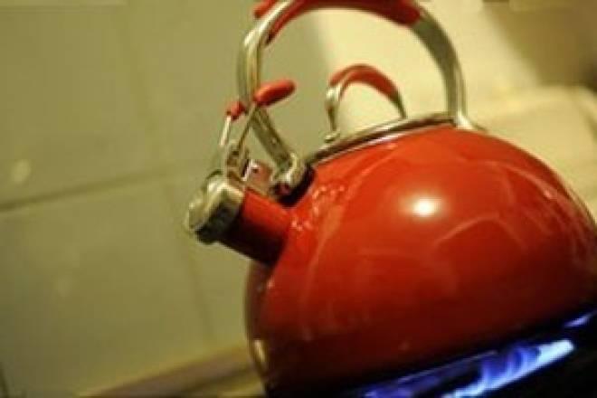 В Мордовии страдающая психическим расстройством женщина забила знакомую чайником