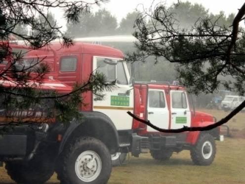 Мордовии дадут почти 3 млн на покупку лесопожарной техники