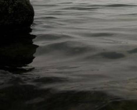 В Мордовии во время купания утонула женщина