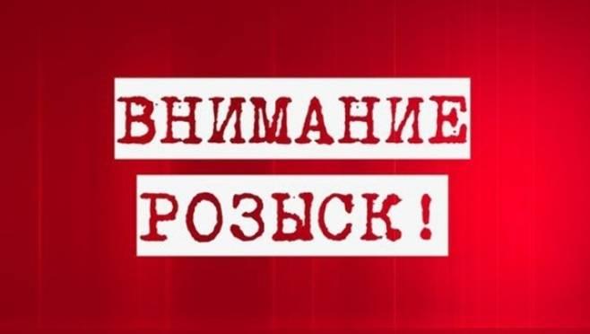Полицейские ищут очевидцев смертельного ДТП на дороге «Саранск — Пензятка»