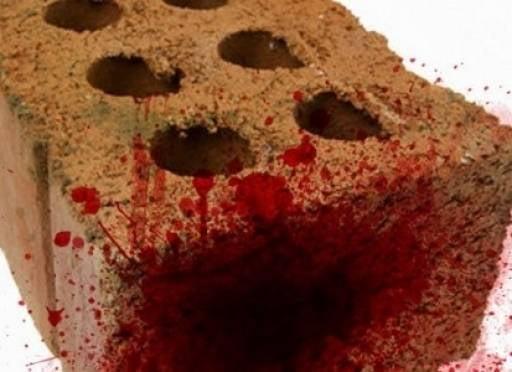 93 удара кирпичом: в Мордовии будут судить жестокого убийцу подруги