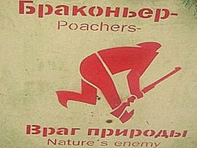 В Мордовии задержали подозреваемого в убийстве лося