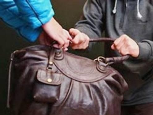 В Саранске поймали рецидивиста-сумочника