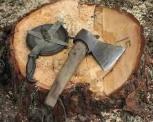 Леса Мордовии будет защищать инициативная группа