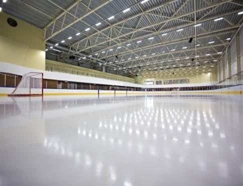 В Мордовии фигуристы и хоккеисты нашли компромисс