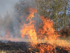 На Пасху пожарные Мордовии тушили сухую траву