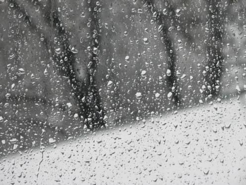 Февраль в Мордовии начнется с мокрого снега и дождя