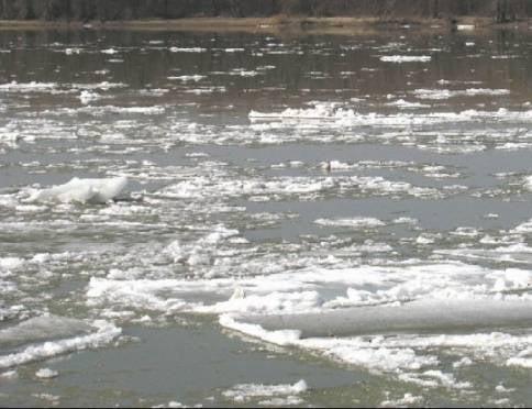 Уровень воды в Инсаре поднимается на 2-3 сантиметра в сутки