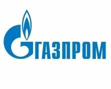 «Газпром» готов «вложиться» в социальные проекты Мордовии